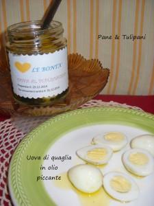 uova di quaglia in olio piccante