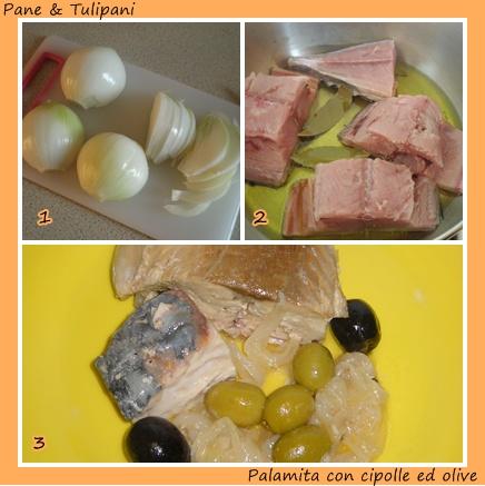 080.5-palamita con cipolle ed olive.2