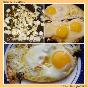 518-uova su cipollotti