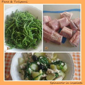 548-Spinarolo in insalata.2