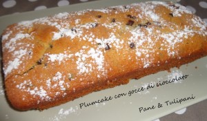 564-Plumcake con gocce di cioccolato.2