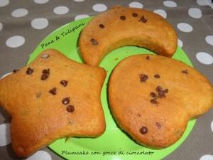 564-Plumcake con gocce di cioccolato.3
