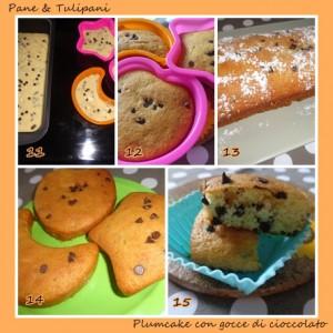 564-plumcake con gocce di cioccolato.6
