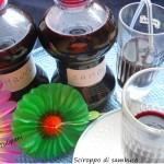 Sciroppo di sambuco con acqua Sant'Anna