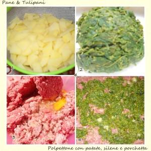 polpettone con patate, silene e porchetta.2
