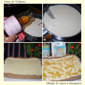 Cheese di cocco e tarassaco.3