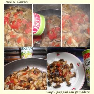 Funghi pioppini con pomodoro