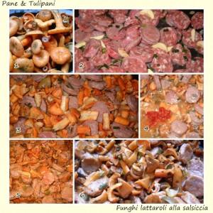 funghi lattaroli alla salsiccia.2