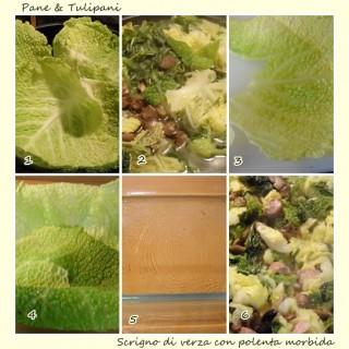 Scrigno di verza con polenta morbida.3