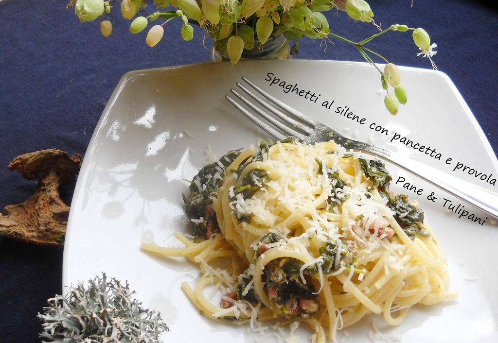 spaghetti al silene con pancetta e provola