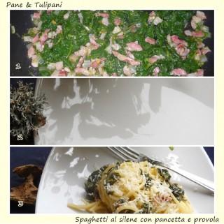 Spaghetti al silene con pancetta e provola.2