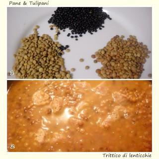 Trittico di lenticchie.2