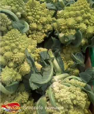 Broccolo romano.22