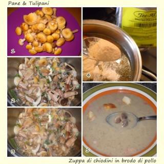 Zuppa di chiodini in brodo di pollo.2