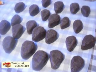 Topini al cioccolato.6