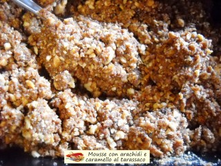 Mousse con arachidi e caramello al tarassaco.5