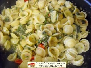 Orecchiette risottate con verdura campestre,2