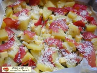 Sfoglia salata con papaverina e bresaola.4