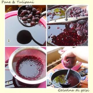 gelatina di gelsi.2