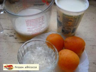 Frozen albicocca.2