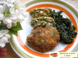 Spinacine di pollo e silene.2