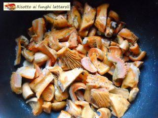 Risotto ai funghi lattaroli.2