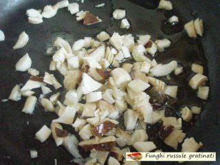 Funghi russule gratinati.3