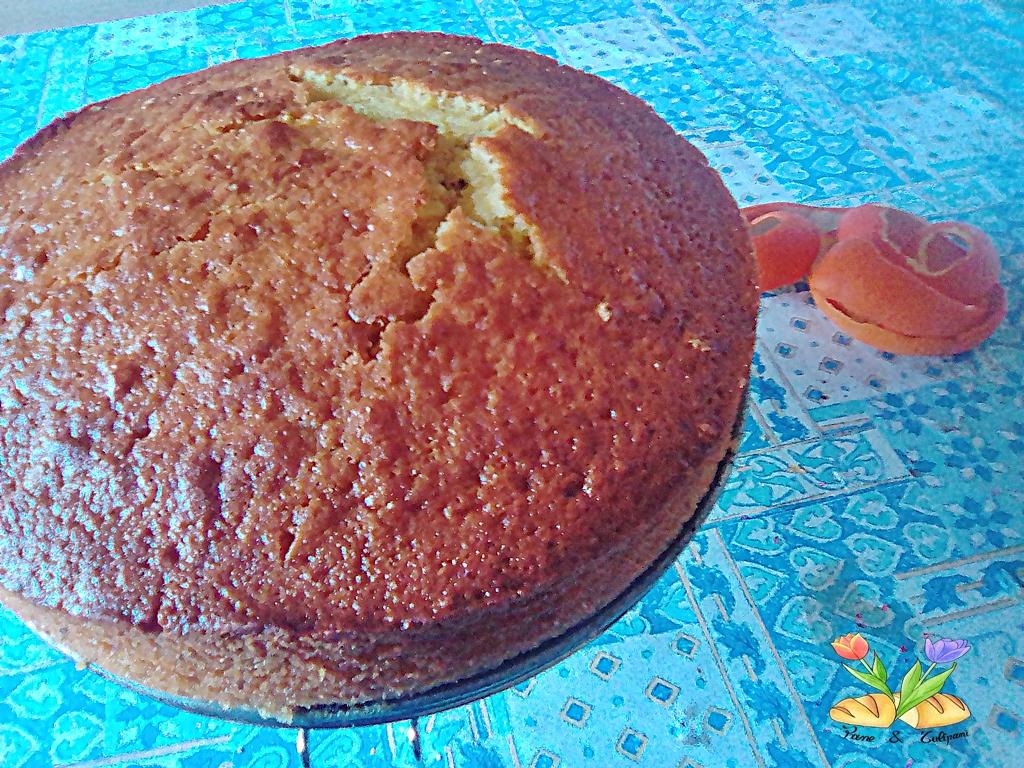 torta all'arancia con topping di clementine