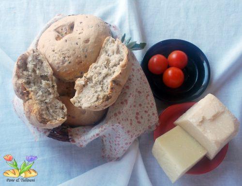 Panini con farina grano saraceno e semini