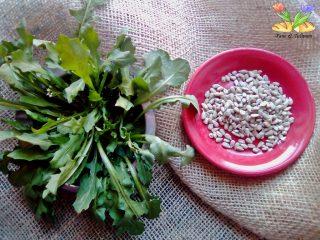 pesto di rucola di campo con semi di girasole