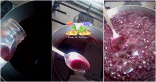 panna cotta alla frutta con salsa di papaveri