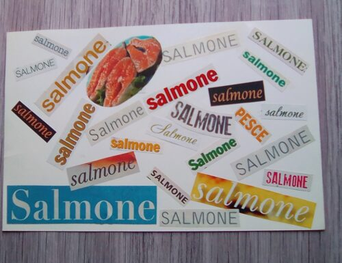 Ricette con il salmone Sfizioso colleges