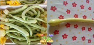 zucchina trombetta al microonde
