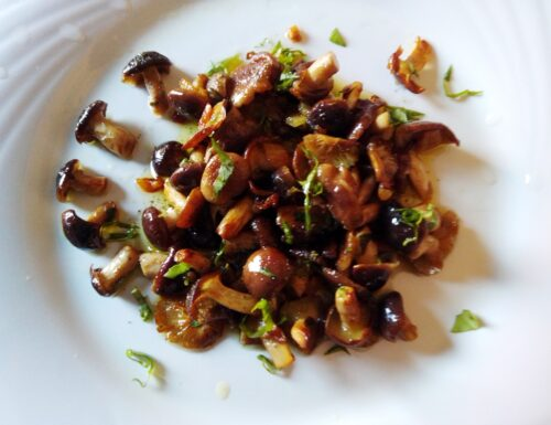 Funghi pioppini trifolati alle erbe aromatiche