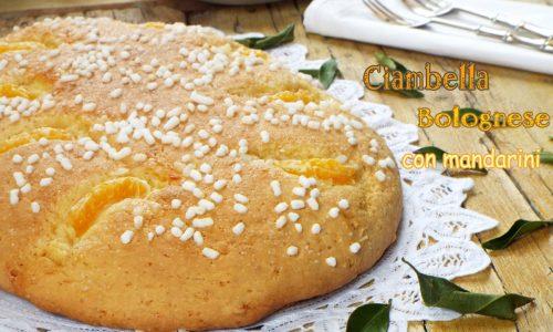 Ciambella bolognese con mandarini